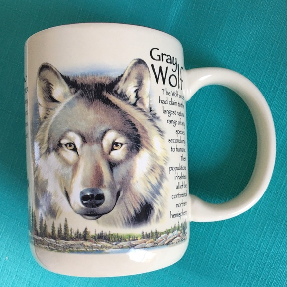 American Expedition Dining Gray Wolf American Expedition Coffee Mug Cup Poshmark